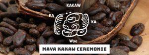 maya.banner.cacao